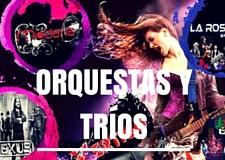ORQUESTAS Y TRIOS MUSICALES